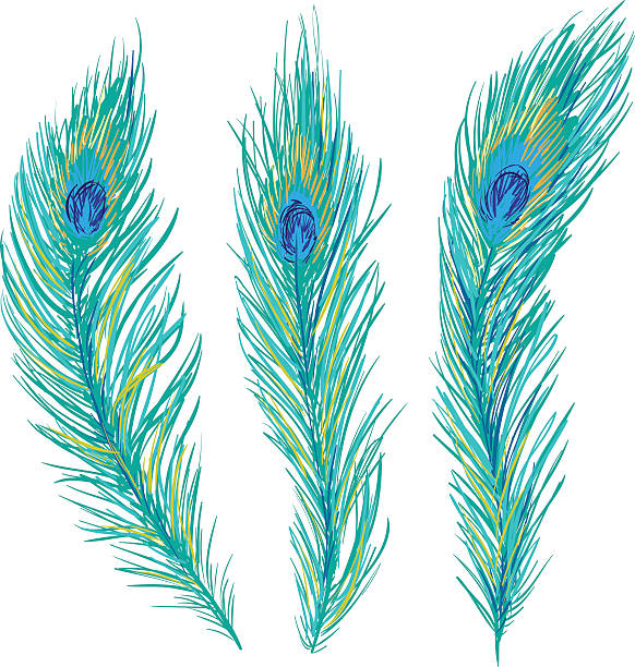 Peacock feathers clipart vector transparent library Top Peacock Feather Clip Art Vector Graphics And Illustrations ... vector transparent library