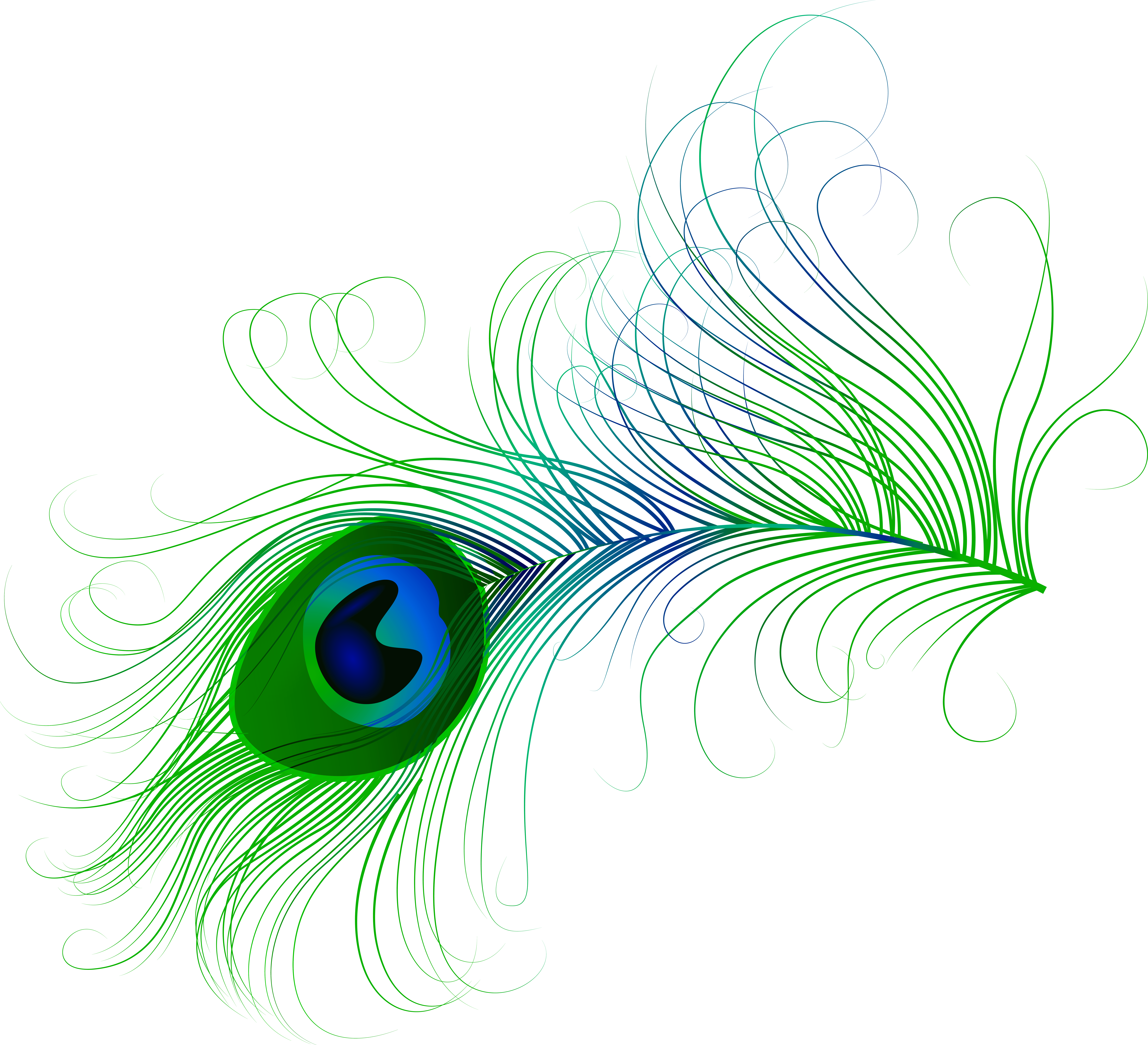 Clipart of peacock feather banner royalty free Peacock Feather PNG Clip Art Image | Gallery Yopriceville - High ... banner royalty free