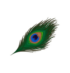 Clipart of peacock feather royalty free Peacock Feather Clipart Vector Images (39) royalty free