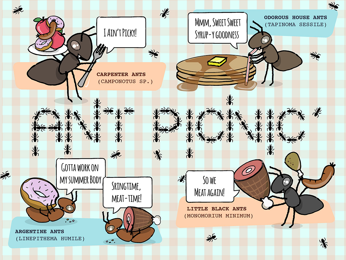 Clipart of people with disabilities having a picnic png freeuse Ant Picnic – Students Discover png freeuse