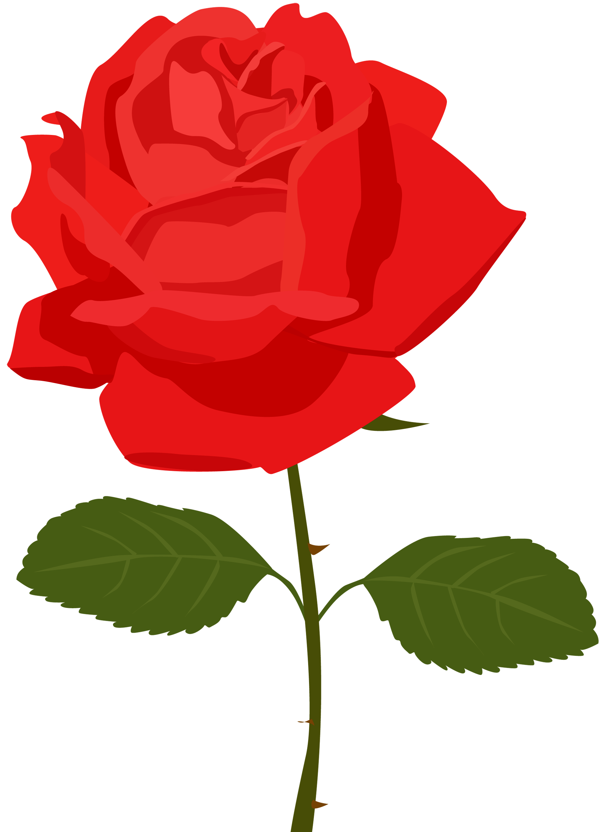 Transparent Red Rose PNG Picture | Gallery Yopriceville - High ... picture library library