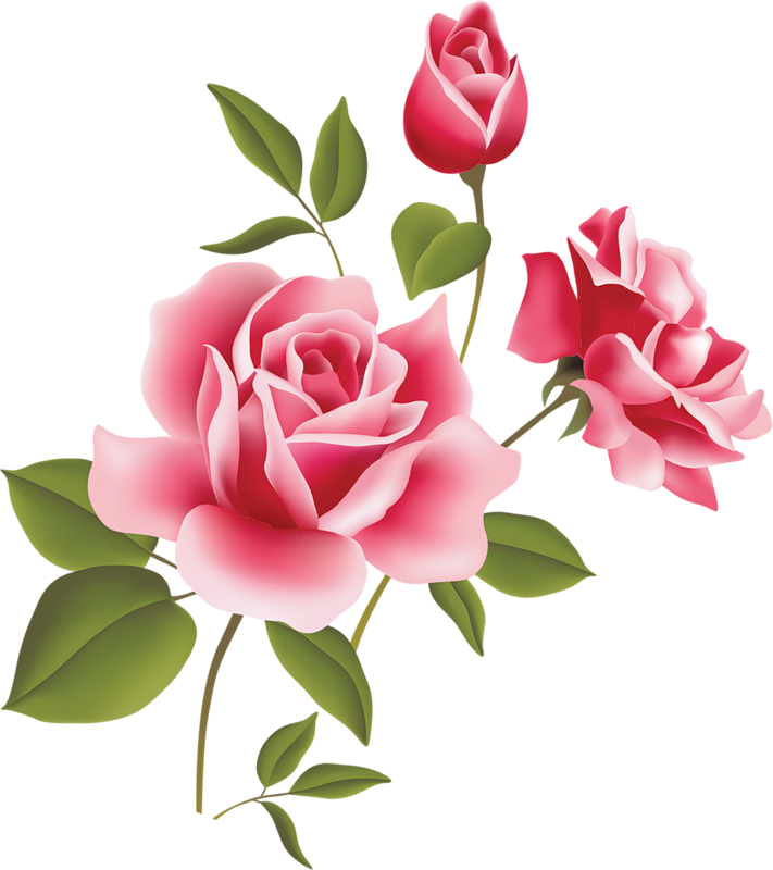 Clipart of rose flower picture library stock Pink Rose Art Picture Clipart - ClipArt Best - ClipArt Best | images ... picture library stock