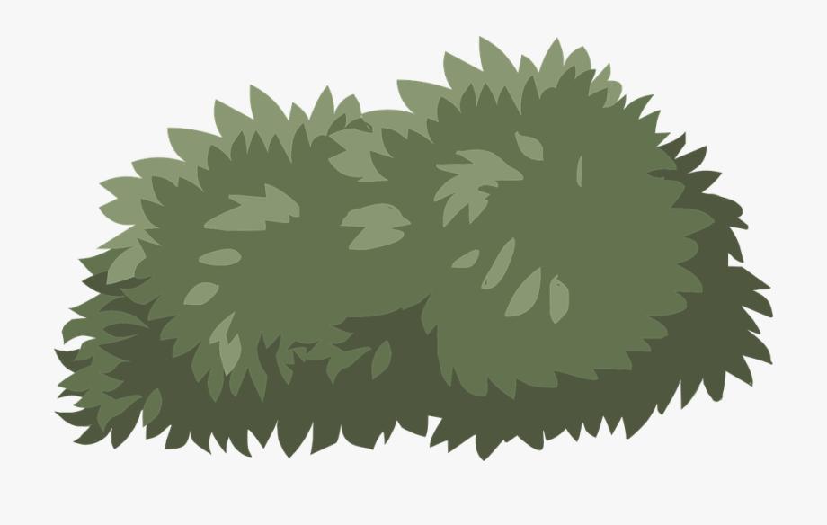 Clipart of shrubs svg stock Bush Shrub Green Nature Plant Lush Landscape - Transparent ... svg stock