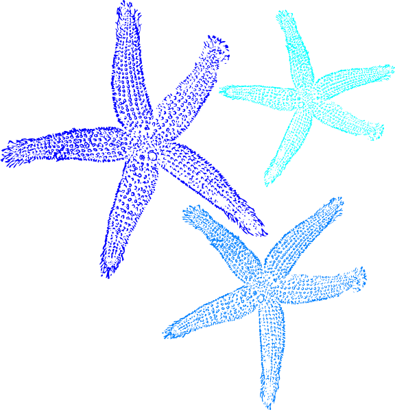 Sea star clipart turquoise image library library Starfish Prints In Blue Clip Art at Clker.com - vector clip art ... image library library