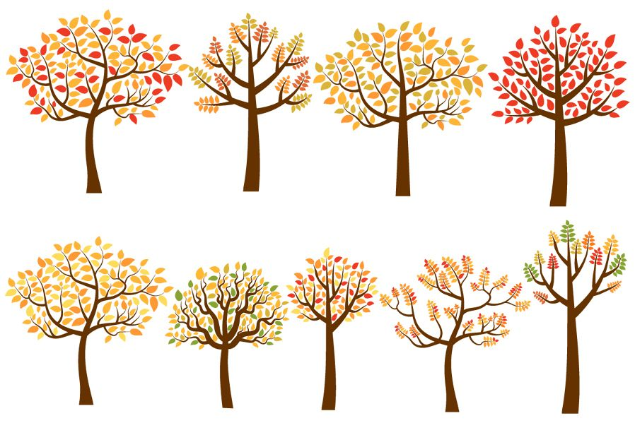 Clipart of trees in the fall clip library library Yellow and Red Fall Trees Clip Art Set, Autumn Tree Clipart clip library library