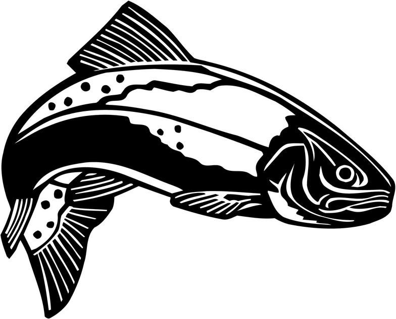 Trout clip art images. Fly fishing pictures clipart