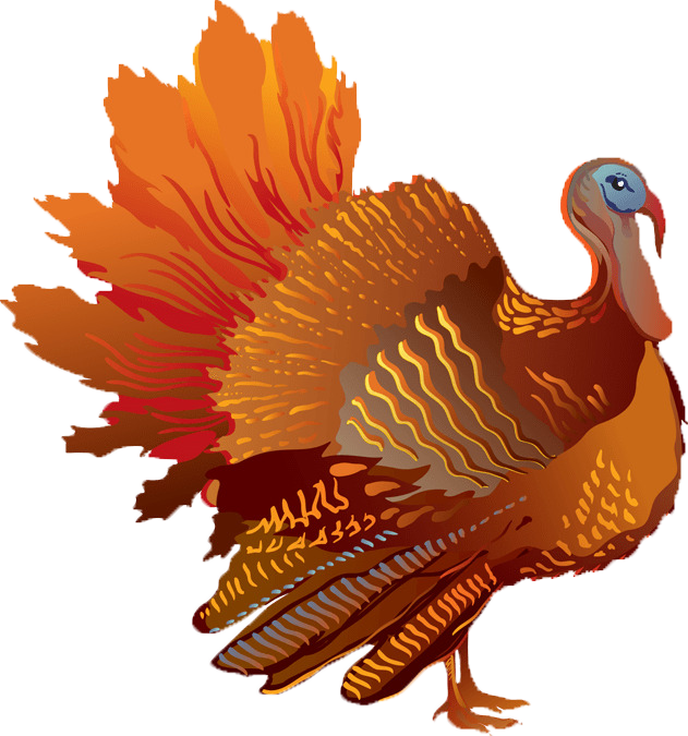 Clipart of turkey feet grass picture library download Thanksgiving Week Activities on Galveston Island | Sand N' Sea Blog picture library download