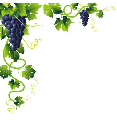 Clipart of vines and branches picture freeuse download Free Vine Cliparts Transparent, Download Free Clip Art, Free Clip ... picture freeuse download