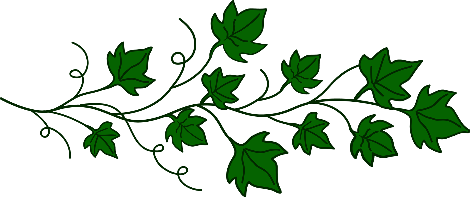 Clipart of vines and branches vector transparent library Free Vine Cliparts Transparent, Download Free Clip Art, Free Clip ... vector transparent library