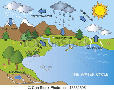 Clipart of water cycle jpg royalty free library Water cycle Illustrations and Stock Art. 2,216 Water cycle ... jpg royalty free library