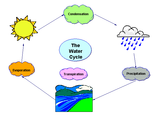 Clipart of water cycle png black and white library Water cycle clipart frame - ClipartFest png black and white library