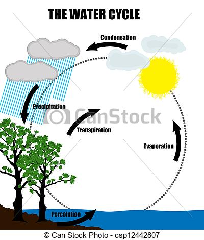 Clipart of water cycle svg black and white Related Keywords & Suggestions for Water Cycle Clipart svg black and white