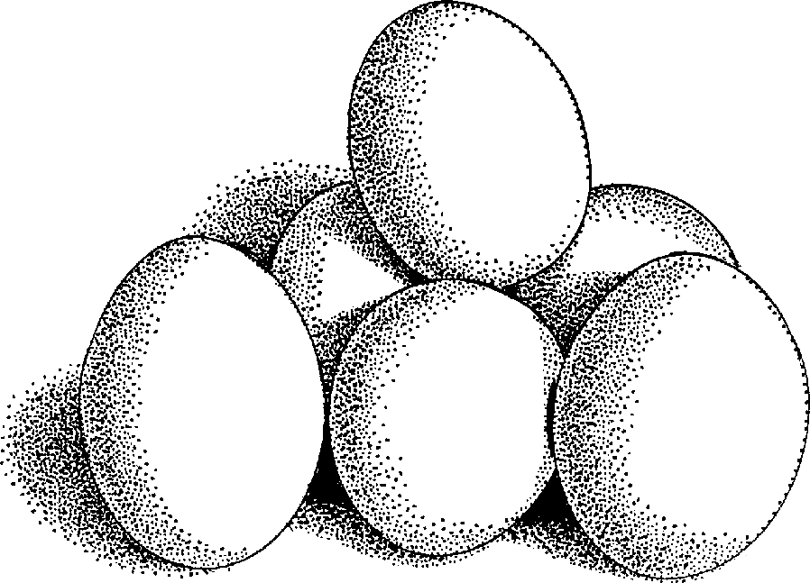 Clipart of white eggs with egg in the middle clip library library Download Free Egg Eggs Food Downloadclipart Org Clipart PNG Free ... clip library library