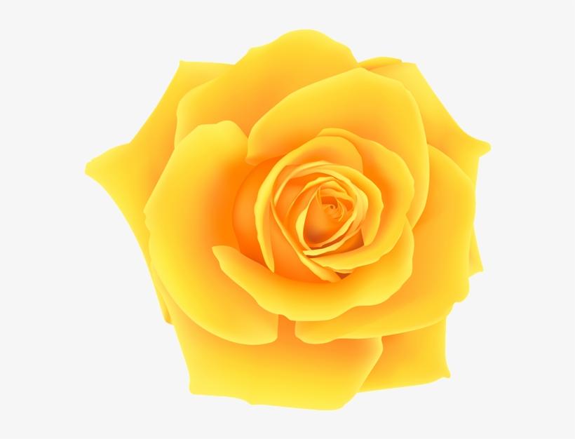 Yellow rose clipart png vector royalty free Yellow Roses Clip Art Yellow Rose Png Clip Art Image - Rosa Amarela ... vector royalty free