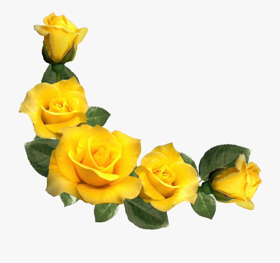 Rose Clipart, Yellow Flowers, Leaf Flowers, Flower - Yellow Roses ... picture library download