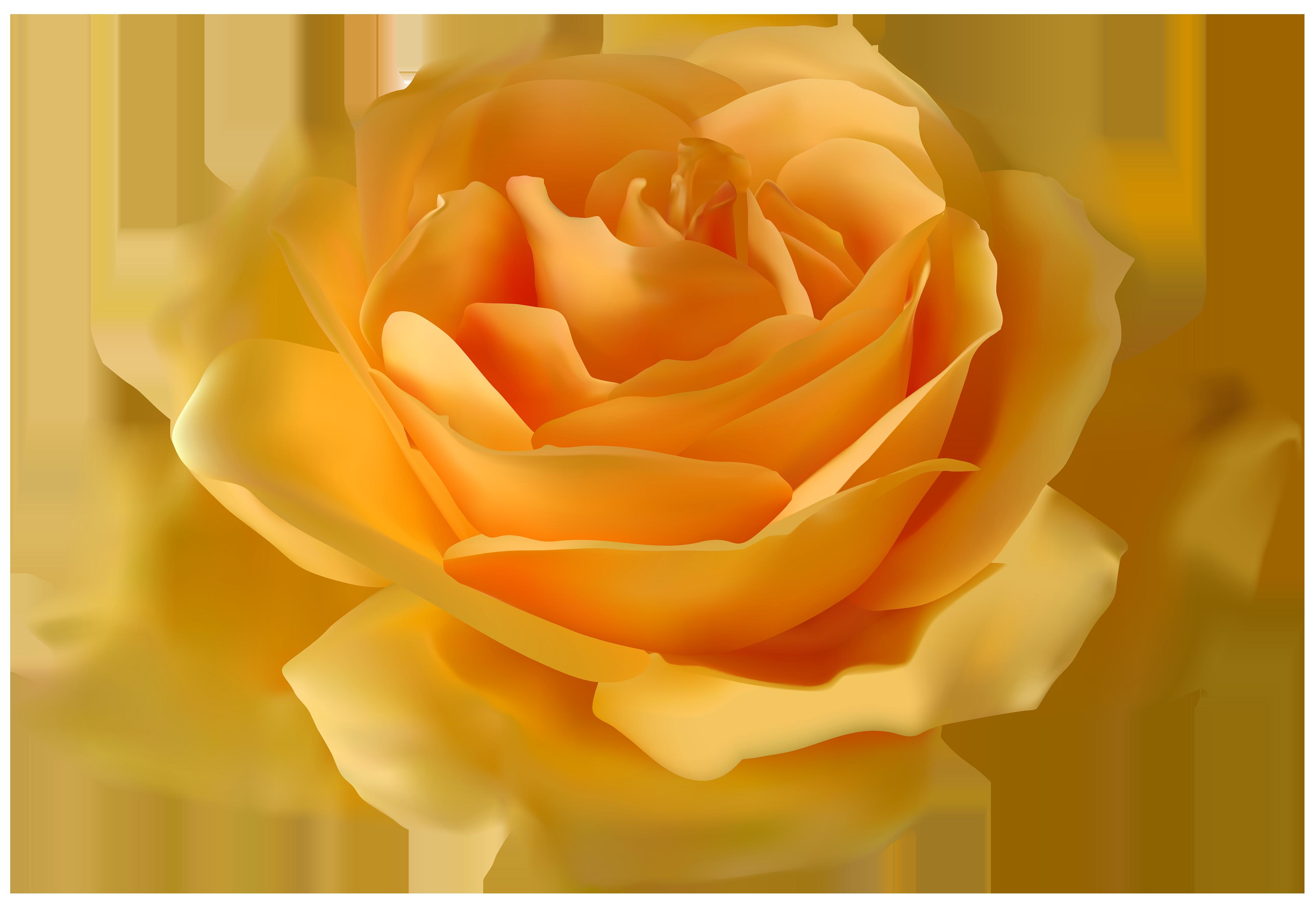 Yellow rose clipart png clip art transparent library Yellow Rose PNG Clipart - Best WEB Clipart clip art transparent library