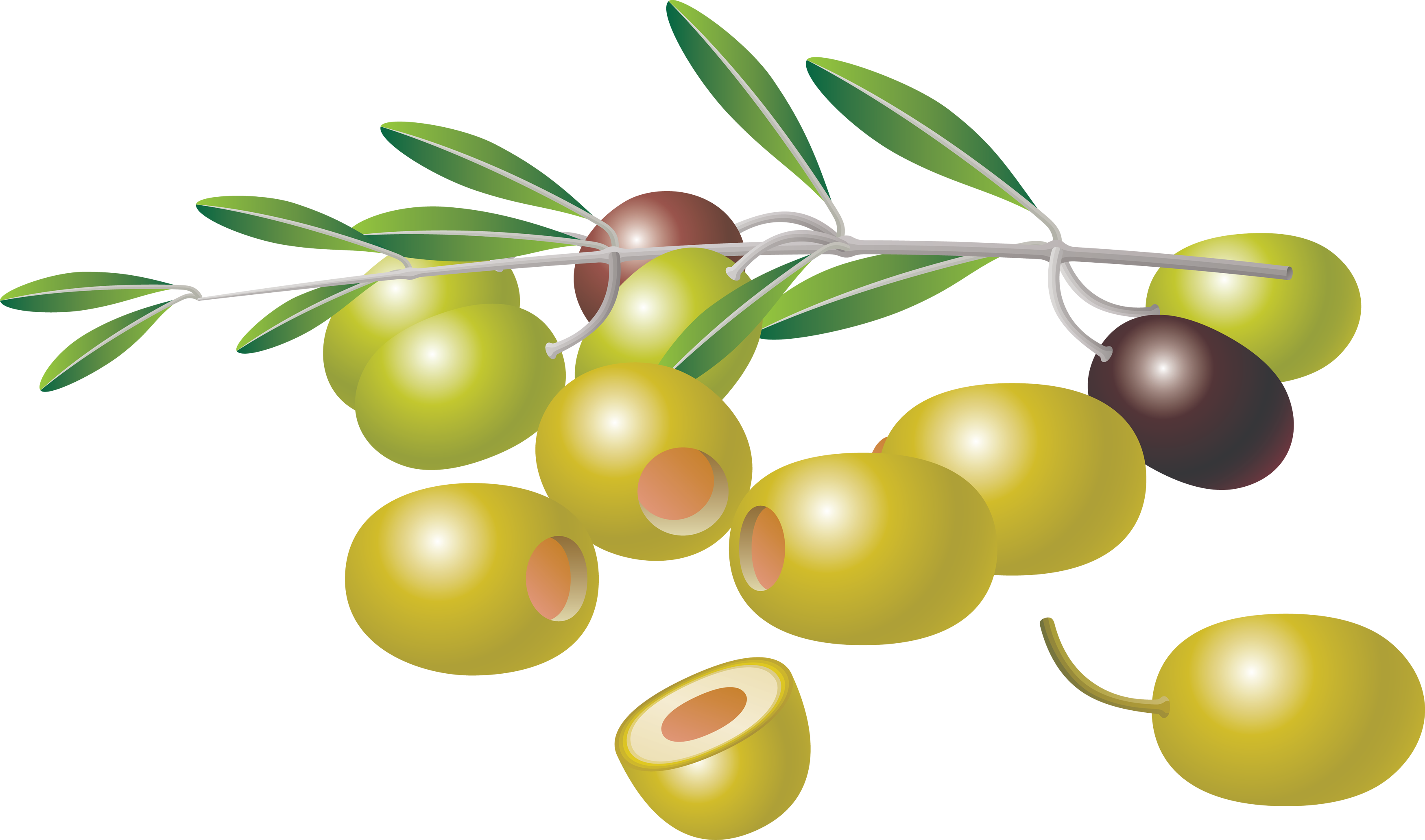 Olives clipart vector black and white library Olives images free olive clip art - ClipartAndScrap vector black and white library