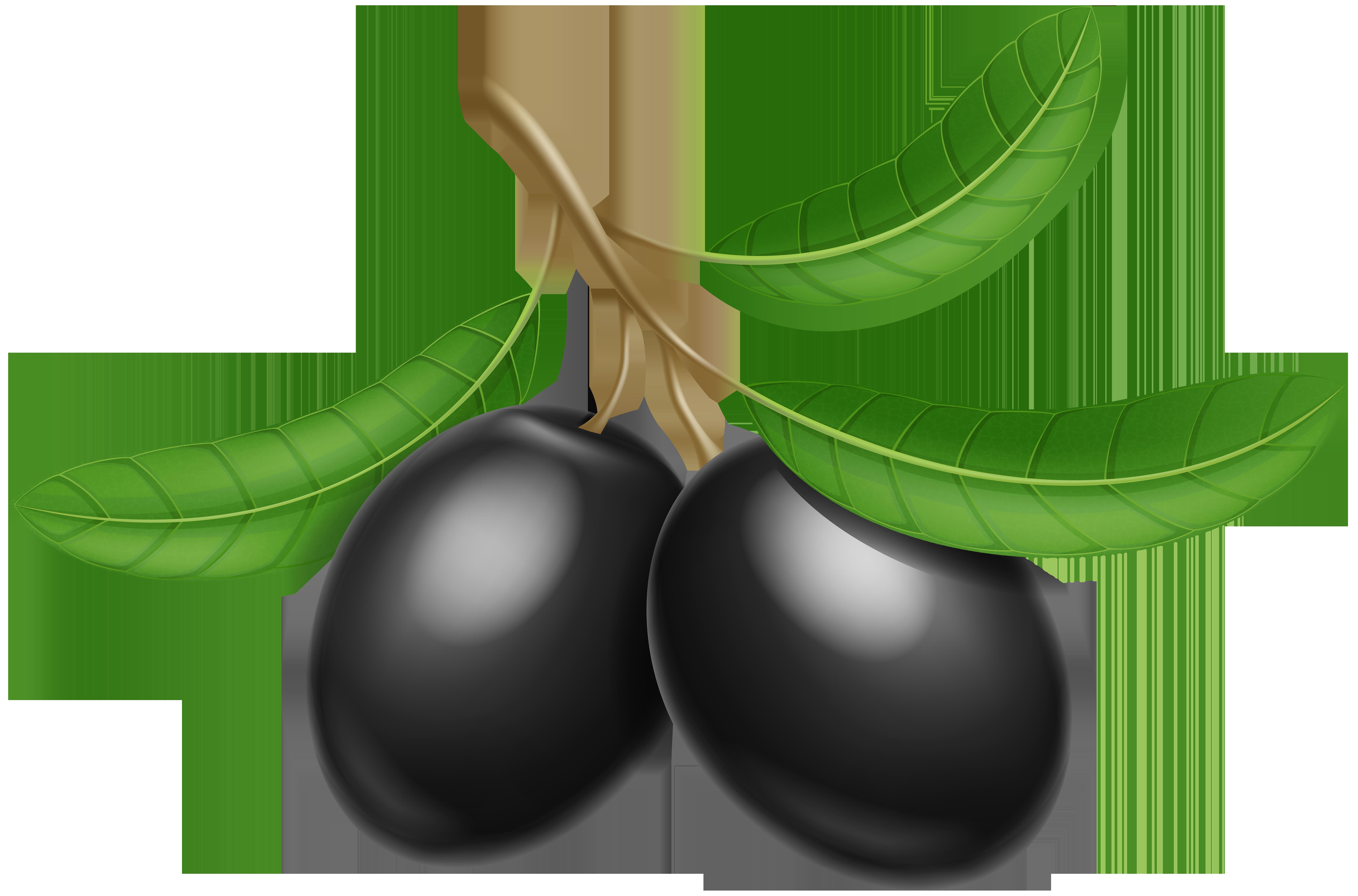 Olives clipart vector transparent Black Olives Transparent PNG Clip Art Image | Gallery Yopriceville ... vector transparent