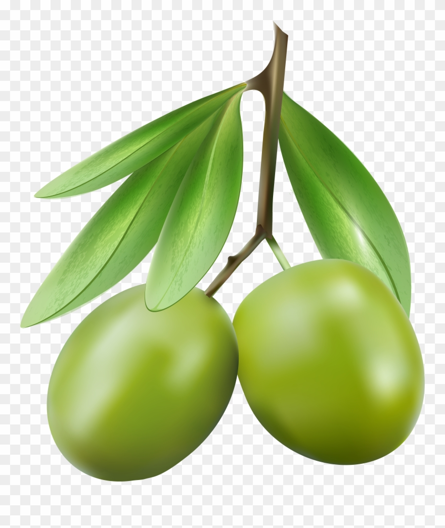 Olives clipart picture black and white Green Olives Png Clipart (#667242) - PinClipart picture black and white