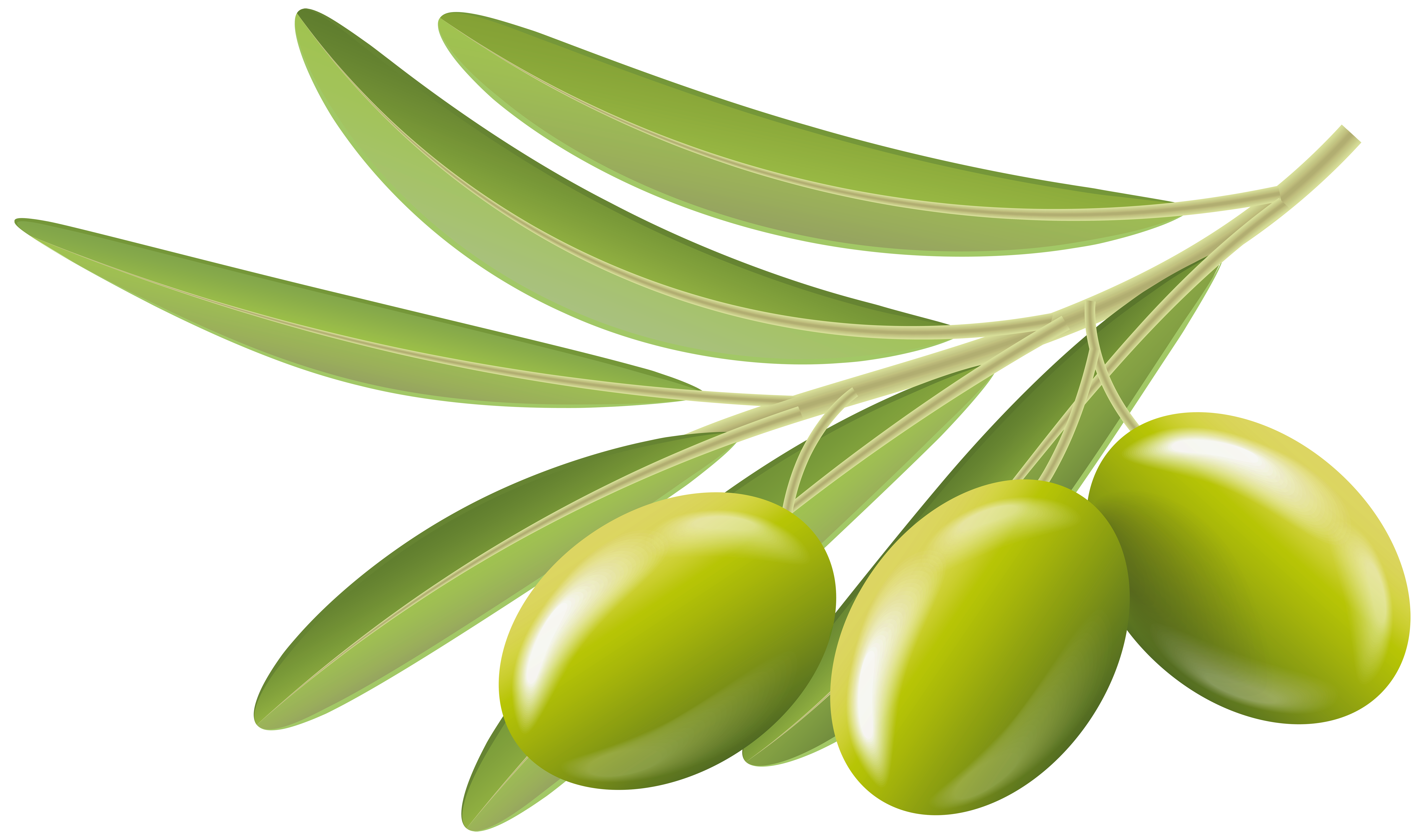 Olives clipart clipart transparent library Green Olives Transparent Clip Art Image | Gallery Yopriceville ... clipart transparent library