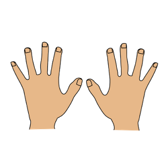Clipart only png free 63+ Hands Clipart | ClipartLook png free