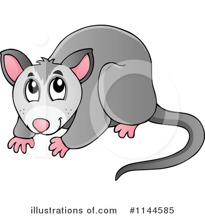 Possun clipart png download 47+ Possum Clipart | ClipartLook png download