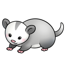 Clipart opposum banner royalty free stock Possum - Lots of clip art on this site   WOODLAND CREATURES   Animal ... banner royalty free stock