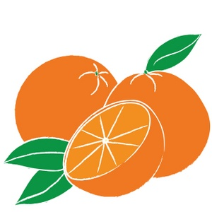 Clipart opranges clip transparent stock Free Orange Cliparts, Download Free Clip Art, Free Clip Art on ... clip transparent stock