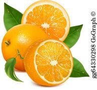 Clipart opranges royalty free Oranges Clip Art - Royalty Free - GoGraph royalty free