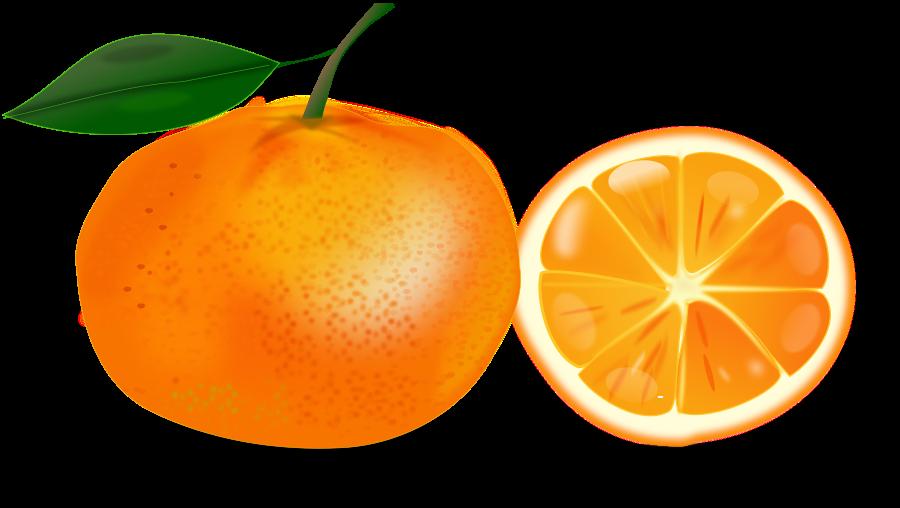 Clipart opranges graphic freeuse Free Orange Cliparts, Download Free Clip Art, Free Clip Art on ... graphic freeuse