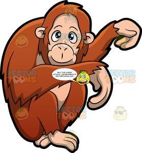 Clipart orangutan image library download An Orangutan image library download