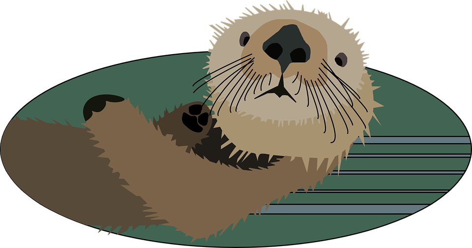 Clipart otter eating fish transparent download Animated Pictures River Otters (65+) transparent download
