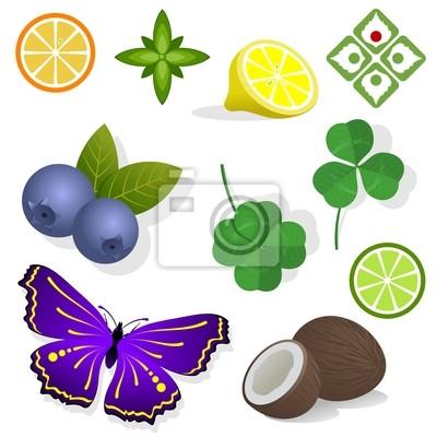 Clipart owoce freeuse Clipart - rośliny. owoce, liście i motyle. - Obrazy - Redro freeuse