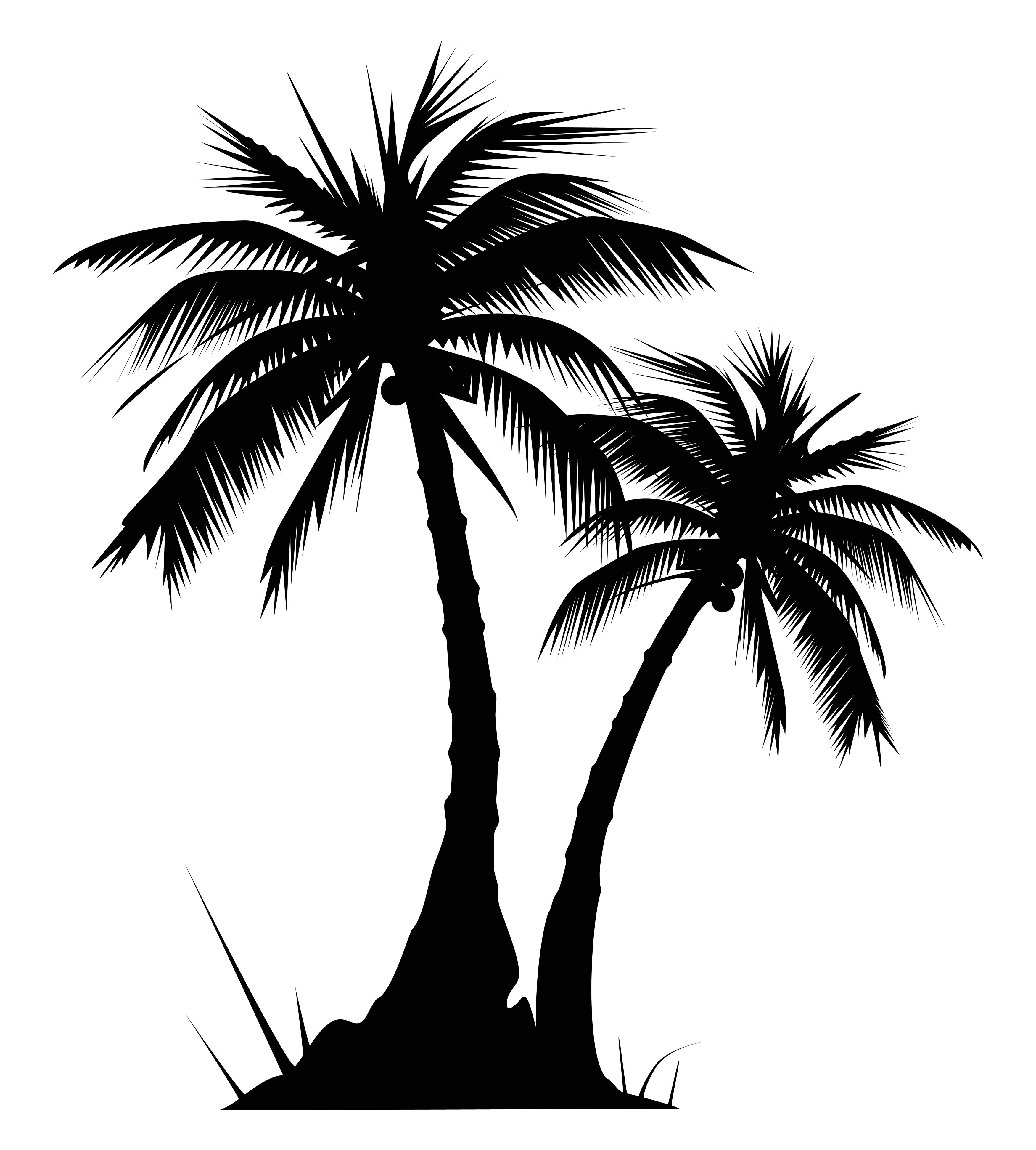 Clipart palm tree beach black and white image download palm tree clip art black and white Quotes | Cric explore | Palm tree ... image download