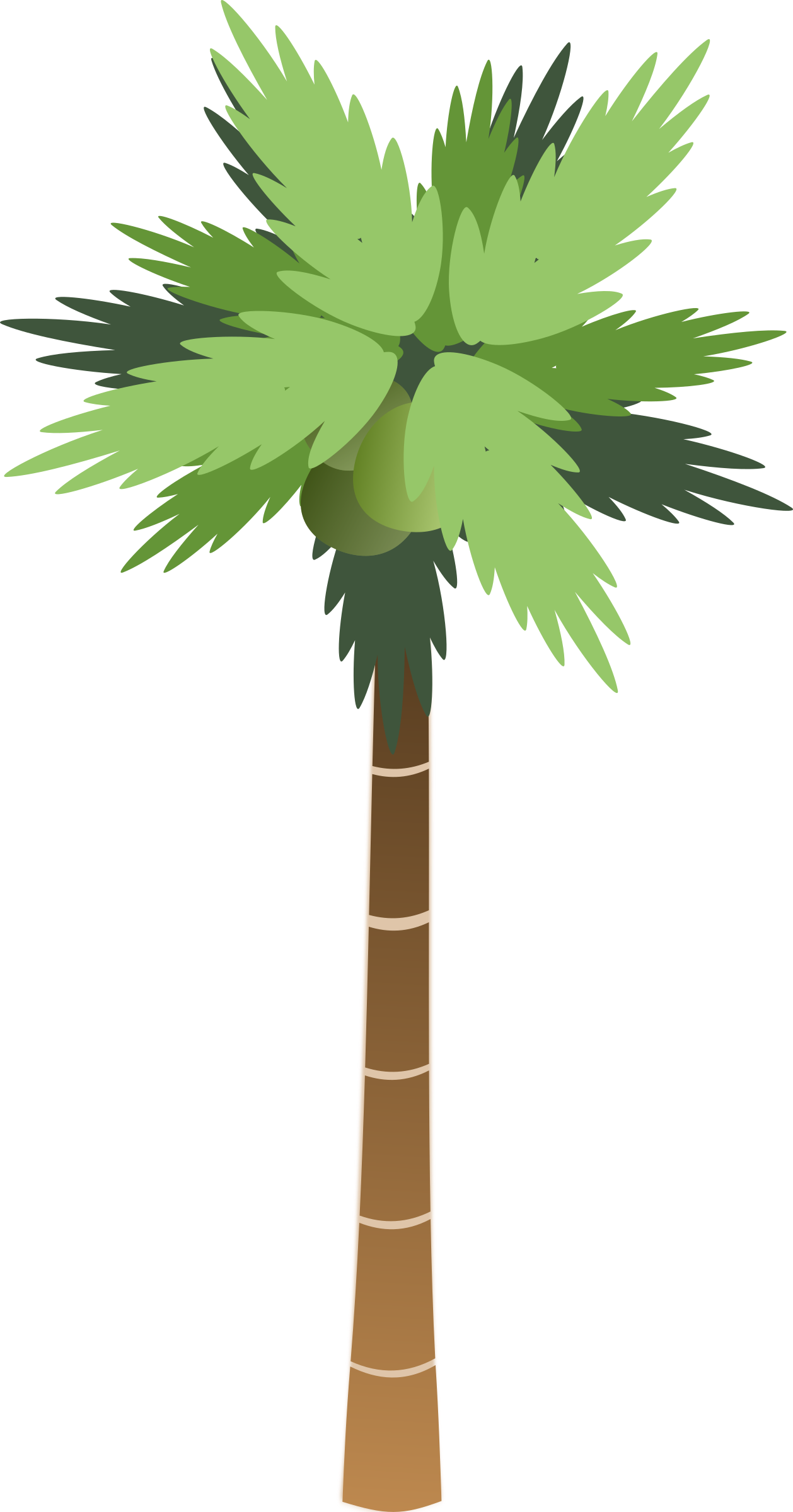 Palm tree clipart vector vector freeuse stock Clipart - Palm Tree vector freeuse stock