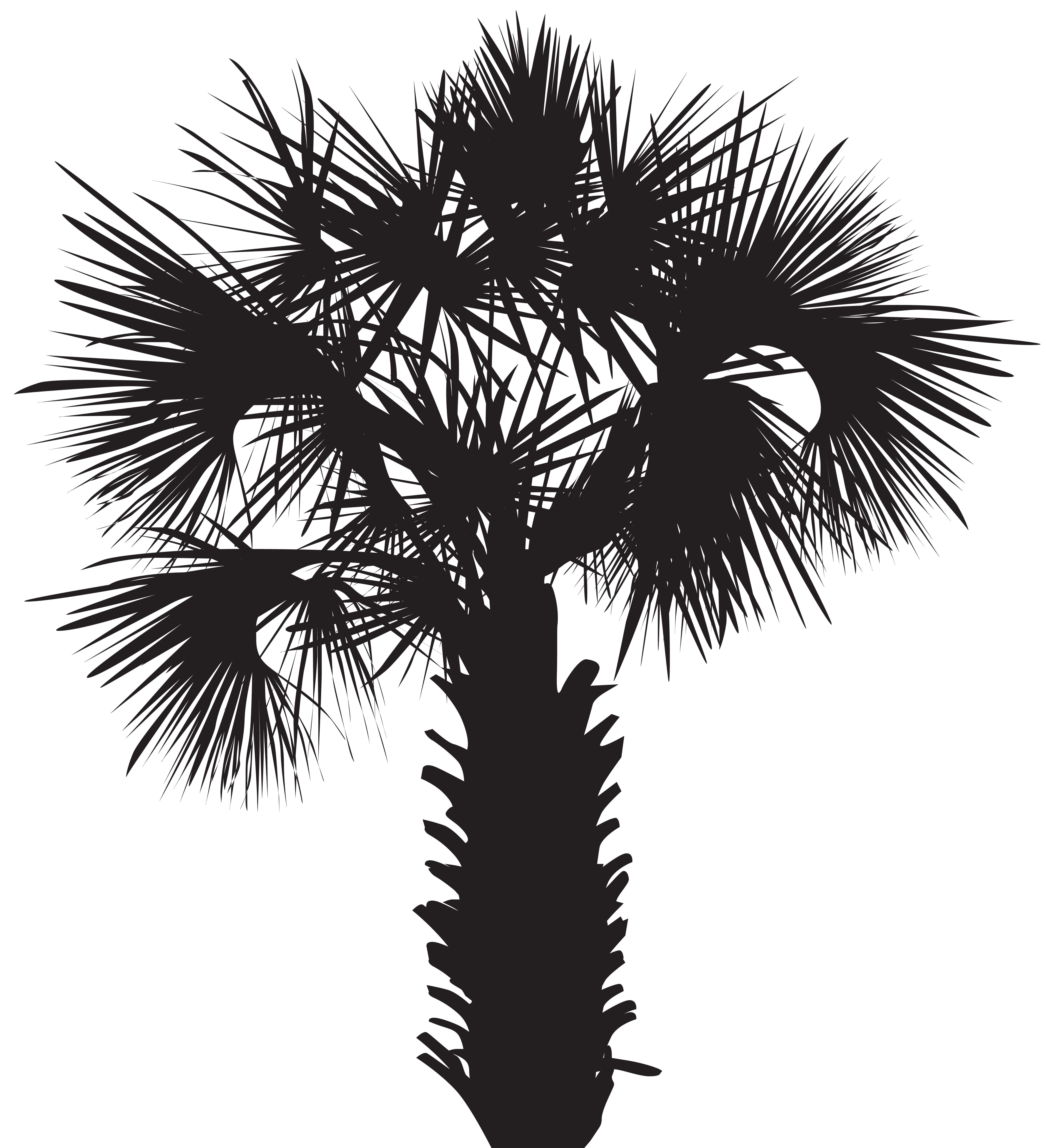 Palmetto tree clipart clip freeuse library Palm Tree Silhouette Clip Art PNG Image | Gallery Yopriceville ... clip freeuse library