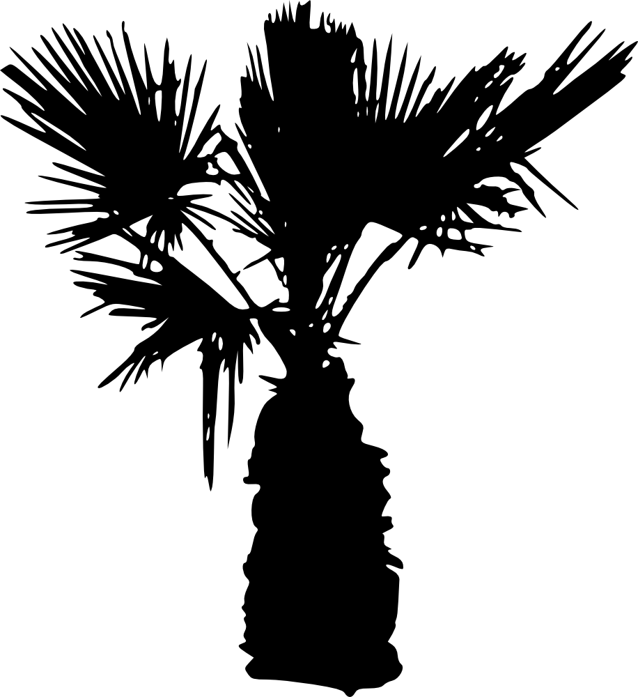 Palm tree silhouette clipart jpg freeuse library 15 Palm Tree Silhouettes PNG Transparent Background | OnlyGFX.com jpg freeuse library