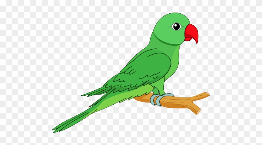 Parrot clipart png Parrot Clipart Mary Poppins - Parrot Images Clip Art - Png Download ... png