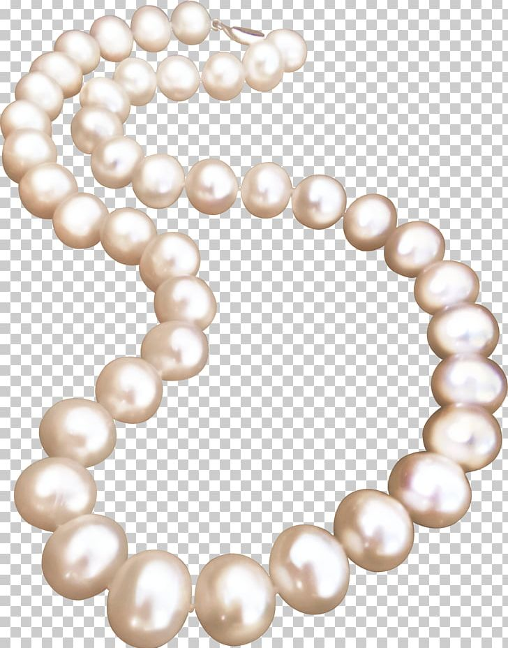 Clipart pearl collection graphic transparent Pearl Necklace Jewellery Pearl Necklace PNG, Clipart, Bead, Black ... graphic transparent