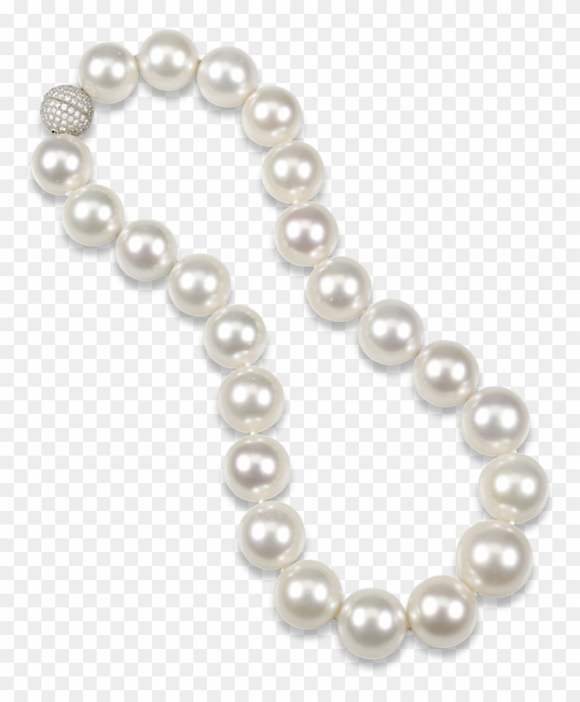 Clipart pearl collection clip library library Pearl Necklace Clipart Png - Pearl, Transparent Png - 769x937 ... clip library library
