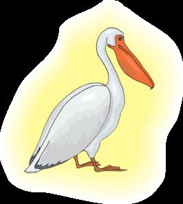 Clipart pelican vector transparent download Free Pelican Cliparts, Download Free Clip Art, Free Clip Art on ... vector transparent download