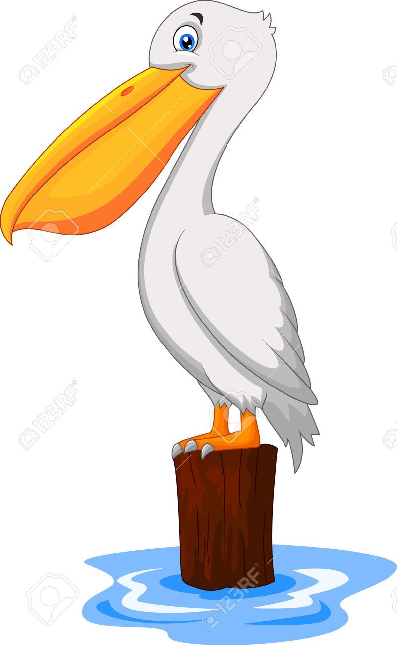 Clipart pelican picture royalty free Pelican Cliparts, Stock Vector And Royalty Free Pelican ... picture royalty free