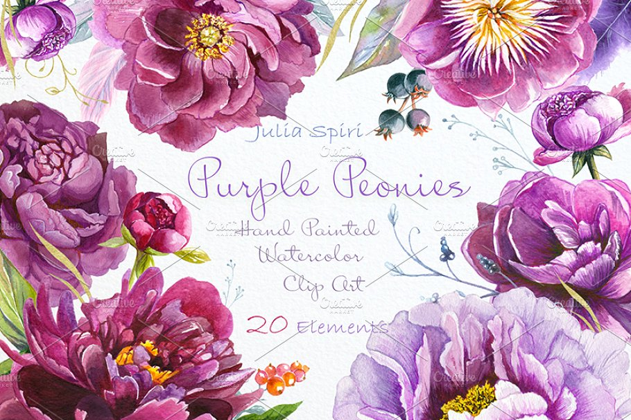 Clipart peonies clip library Purple Peonies. Watercolor Clipart clip library