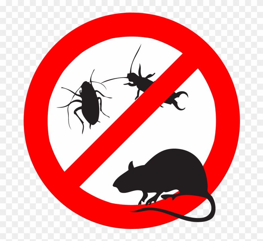 Clipart pests image freeuse Insect And Pest Repellent - Bedbug Clipart (#2185024) - PinClipart image freeuse