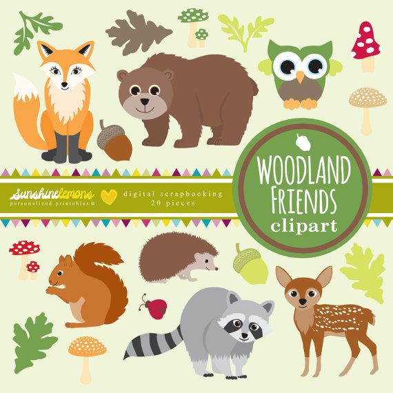 Clipart pet rocks for kids png black and white download Woodland Friends Clipart - Woodland Creatures Clipart - Woodland ... png black and white download