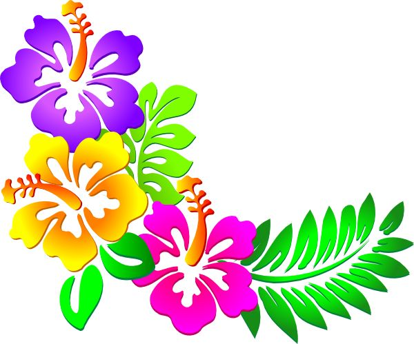 Clipart photos of flowers banner library download Hawaiian Flowers Clipart & Hawaiian Flowers Clip Art Images ... banner library download