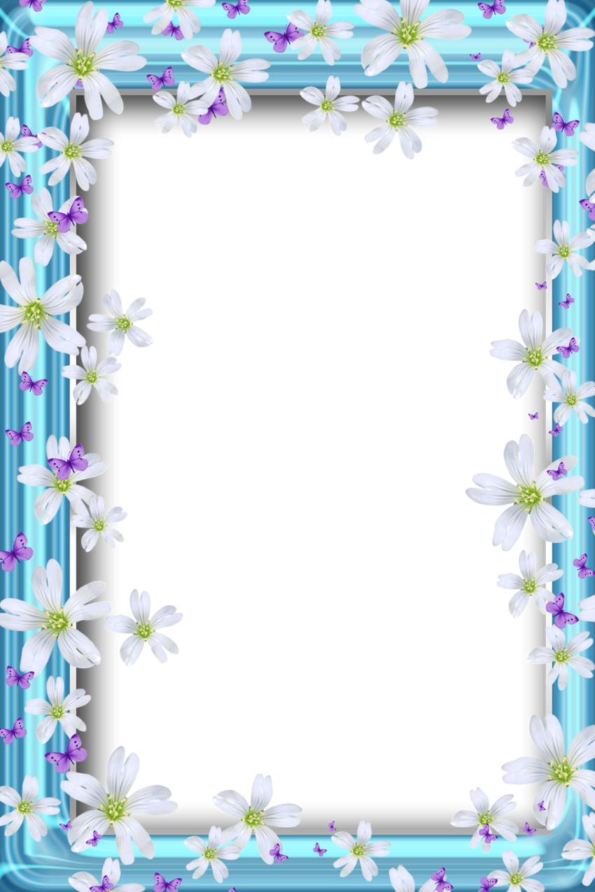 Clipart picture frames cross picture library Transparent Bue PNG Frame with Flowers and Butterflies | Borders ... picture library