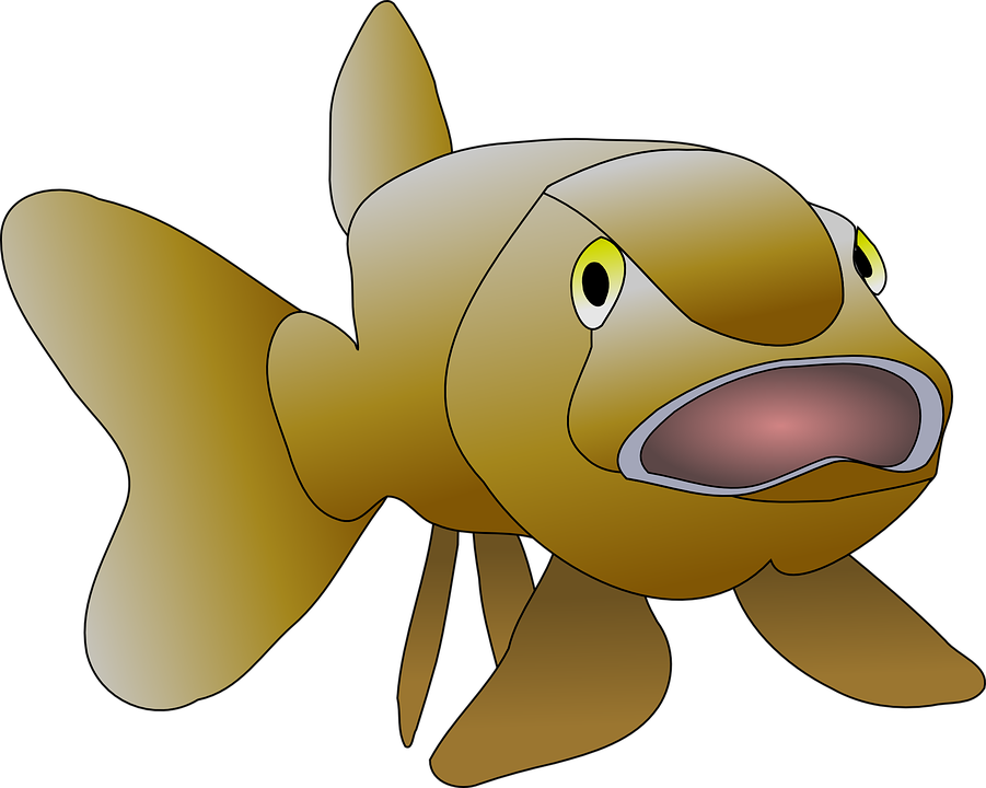 fish open mouth clipart - Clipground graphic transparent stock