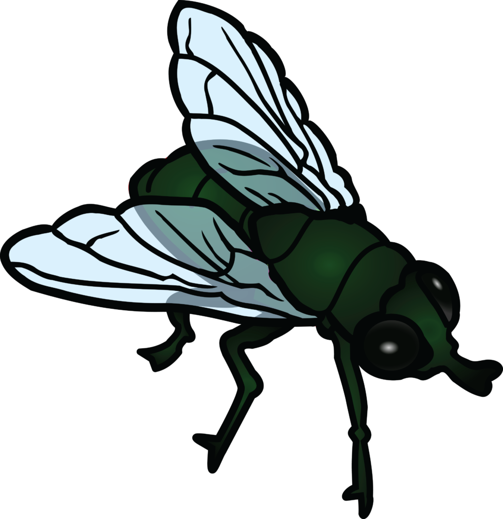 1377 Free Clipart Of A Fly House | typegoodies.me clip download