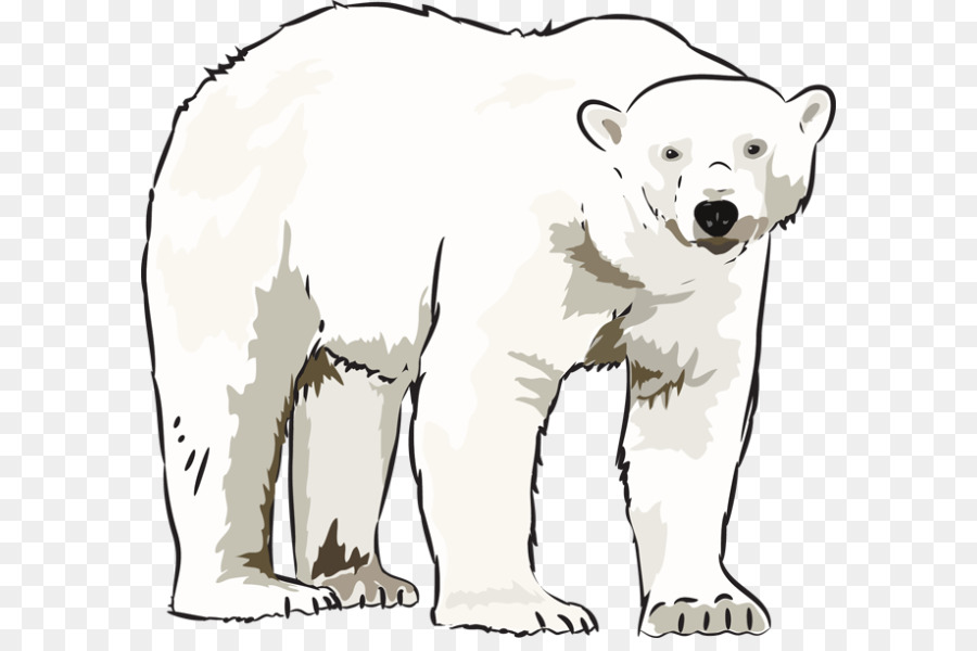 Talking polar bear clipart image free download Polar bears clipart 5 » Clipart Station image free download
